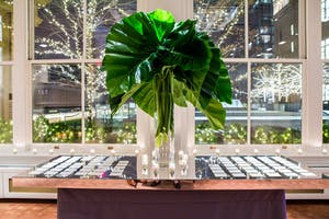 Mirrored escort card display with large tropical leaves, white holiday lights in the background