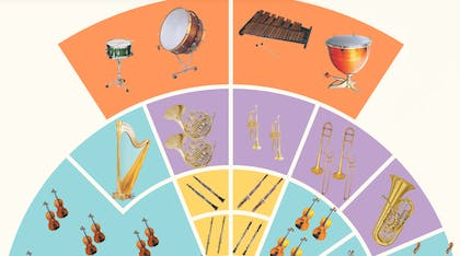 A diagram depicting the various instruments in an orchestra
