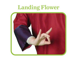 Landing Flower: a woman pressing her middle finger and thumb together