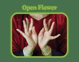 Open Flower: a woman holding her hands open