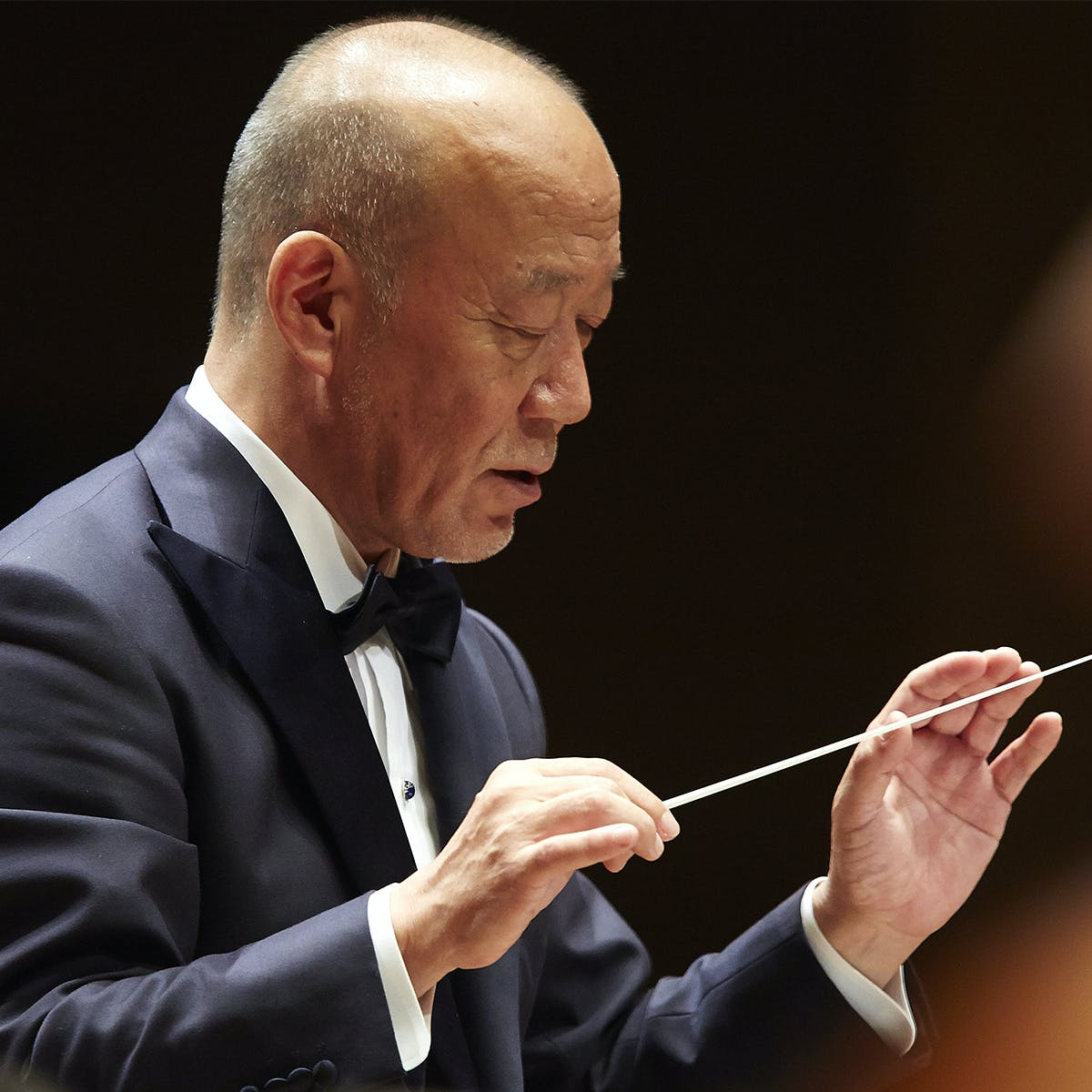 Music from the Studio Ghibli Films of Hayao Miyazaki, at Carnegie Hall